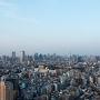恵比寿ガーデンプレイス、38Fから見える東京の街並み。 右手奥に東京タワー。 少し左にビルの陰に隠れながらスカイツリー。