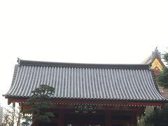 そして到着した浅草寺。