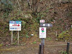 駐車場に停め、協力費を支払い保護地域に入ります。(  https://niigata-kankou.or.jp/spot/10760   )