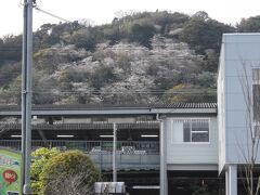 新蒲原駅から見上げた御殿山 まあ合格点の一日でしょうか