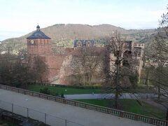 まずハイデルベルグ城を見学です。