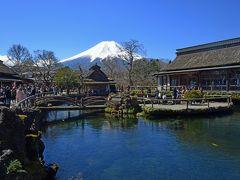 宿を出発して、近くの忍野八海に向かった。富士山の伏流水がわき出して小池を作っているのだ。  中心部の中池まで行って1時間の自由時間。中池は忍野八海の池ではないのだが、コバルトブルーの水が美しく、忍野八海地区の代表的景色となっている。わきだした澄んだ水が空を映しているのだろうか。白銀の富士山とも良くマッチしている。人気が高いから人も多い。