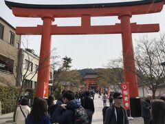 京都観光、まずは来てみたかった伏見稲荷大社へ。ものすごい人でした!外国人観光客の方々にも大人気なようです。