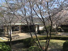 小村寿太郎記念館  実物大の写真像がありましたが  かなり小さい人だったようです  当時はこれくらいの人が多かったんでしょうけど