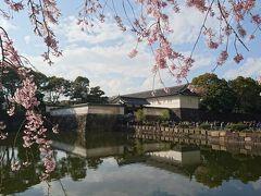 皇居・大手門 地下鉄・大手町駅より徒歩5分。旧江戸城の正門で、慶長12年(1607年)藤堂高虎によって1年3ヶ月ほどで完成 した皇居・大手門に向かいました。  元和6年(1620年)の江戸城修復に際し、伊達政宗、相馬利胤の協力によって現在のような桝形形式(ますがた)の城門になったといわれています。しだれ桜が綺麗です。