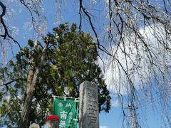 笹戸山 長泉院 (札所二十九番)