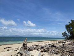 グリーン島の浜辺でぼーっとしていると  「なんで俺会社で働いているんだろう」  っという疑問が頭に浮かんできた。