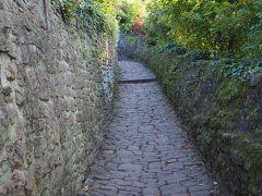 哲学者の道からカールテオドール橋に降りる小道。