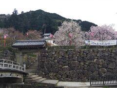 出石城跡になります。階段状に本丸跡や再現された櫓などを見ることができます。 また、桜の名所にもなっており、たくさんの桜がありました。