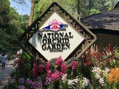 こちらは有料ゾーンとなります、植物園の目玉【National Orchid Garden】ですー。入場料はS$5になりますー。シンガポールは蘭の栽培や品種改良に力を入れているとのことで、こちらには約1,000の原種と約2,000の交配種が集められているとのことですー。 さっそく中に入ってみましょう!('ヮ' )