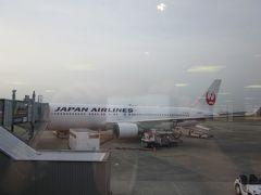 JALで成田空港へ 成田で国際線に乗り換えです。