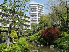 徳川8代将軍吉宗が、鷹狩りの際に喉を潤した泉がここにあり、平成に入ってから公園として当時の庭園が復元されたそうです。