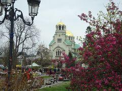 アレクサンドル・ネフスキー大聖堂が見えてきました