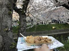 2019.04.06 薄暮  五条川 岩倉桜祭り会場  名古屋コーチン買った