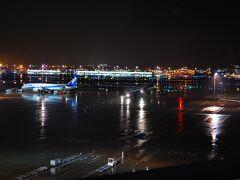 羽田空港へは40分くらいで到着。  飛行機好きなので、デッキを散策します。 雨に濡れた滑走路がきらきらしてて素敵。