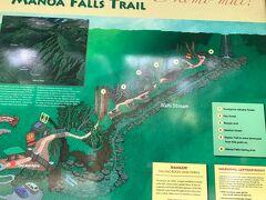 到着。 マノアの滝です。 午後はトレッキングに参ります。  <移動> ホテル→マノアの滝
