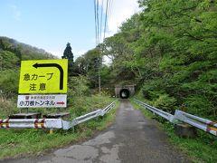 ★道路改良の波から外れた「土木遺産小刀根トンネル」は、新緑の中に佇む現存最古のトンネル。