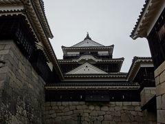 松山城の天守は、現存12天守の一つです。 三重三階地下一階の建物です。