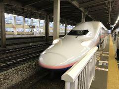 帰りは途中の停留所で降りる人がいなかったので、浦佐駅に直行。おかげで16時半には駅に着いたので17時発の新幹線で帰路につくことができました