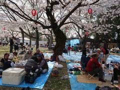 まだまだ桜を見たりない!ということで、姪っ子もつれて海老山公園というところに寄ることにしました。車を降りて公園に入ると漂ってくる(というよりは充満)しているのは、桜のかほり・・・ではなくて焼肉の香り!  私の実家の近くの観桜地ではもう殆どで禁止されている煮炊きがここではできるのですね。いやもう賑やかなことといったら。