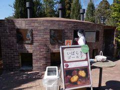 「なめがたファーマーズヴィレッジ」で焼き芋ミュージアムと、スイートポテト作り体験を終えて、体験型施設を出ました。  ここまでの様子はこちらで。 ・焼き芋ミュージアムと土手にぽつんとある鳥居2019①~なめがたファーマーズヴィレッジのミュージアムとスイートポテト作り~ https://4travel.jp/travelogue/11487267  外に出ると、