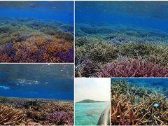 島尻にある宮古島オーシャントライブにて、大神島シュノーケリングツアーに参加
