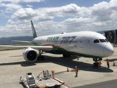 EVA航空の機材です。  EVA航空は初めて乗る航空会社で、台北経由でニューヨークへ行きます。10月時点で安かったので決定。