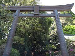 暇なので「高千穂神社」