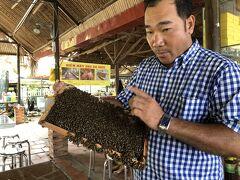 陸に上がってすぐに案内されたのはハチミツ農園。