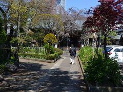 文京区白山上に有ります、白山神社さんの参道・本殿を見ます。