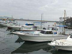 レストランを出ればすぐそこは瀬戸内海の内海の波止場です。