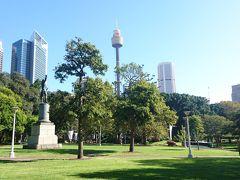 セントメアリー大聖堂西側にあるハイドパーク。 そして、真ん中に見えるシドニータワーへ。