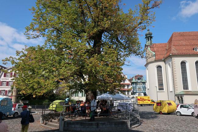 大聖堂広場まで帰ってくると、みなさん木の下で休んでいました