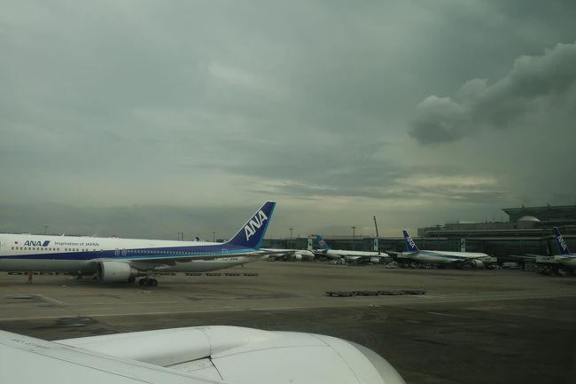 羽田空港に到着。<br /> スイスはあんなに素晴らしい天気だったのに、羽田はどんよりとしていました。別に問題ないですが。
