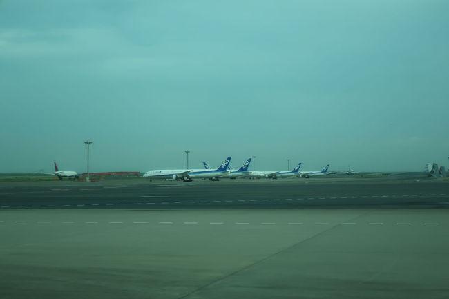 いつもと違って第一ターミナルの下を通り抜けたので、南側に駐機している飛行機たちが見えました。エンジン交換しているのでしょうか、いくつもここに駐まっています
