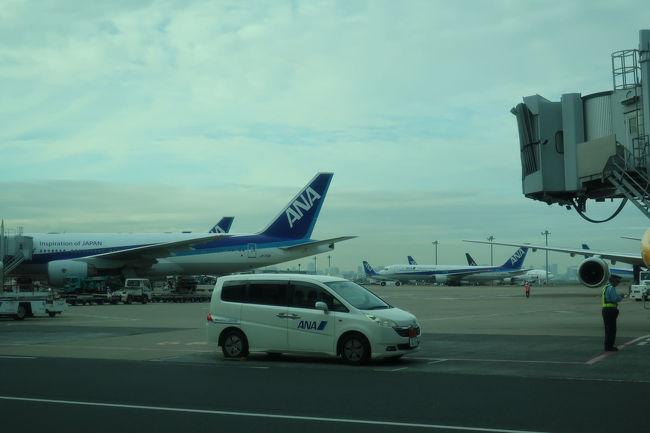 第二ターミナルに到着。やはり、一旦空港外へ出るよりも、空港内で連絡バスを利用した方が便利です。あとは、松山行きに乗って帰るだけ。<br /><br /><br /> 大変長い期間旅行記を作成するのに時間を要しましたが、最後までお付き合いいただきありがとうございました。