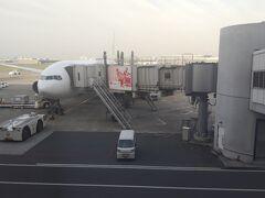朝一の便で大阪に、向かいます。 今回の目的は、一の宮の参拝と、サァイア到達を目指します。  回数修行を始めた1月は、同じ便でも、まだまま真っ暗でしたが、今はもうすっかり日が昇っています。