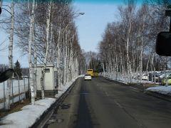 帯広空港からバスで帯広駅へ 白樺がお出迎え