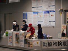 関西空港へ到着し、手荷物受取フロア(1階)までやってきました。フロア中央の検疫カウンターに行き 「パイナップル台湾で買ってきましたーーー。これ検疫証明書です」 「実物は、、これですね」「証明書『裏書よし!』」(ここではじめて台湾の証明書を裏返してみたら、本物ですという主旨の英文が、、、)  「では、検疫済み章 貼らせてもらいます」「ご協力に感謝します」      ※このエリアカメラ原則禁止なので、遠くから撮影、かつ係官の顔認識されないよう目線はいってます。ポスターの配列など参考にしてください。
