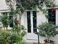 友人は、薔薇が大好き。彼の庭には随所に薔薇が咲いています。どうして、薔薇が好きかと聞いた答えが面白い。美しいものには、トゲがある。爆!