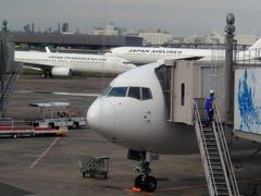 まずは 朝7時過ぎのJAL  羽田→出雲空港  近頃 黄色い飛行機ばっかり乗っていて(バニラ)  JALは久しぶり 座席広くて快適だなぁ♪