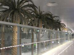 午前5時35分にドバイ国際空港に到着。ヤシの木のオブジェがアラブの国の雰囲気を出している。
