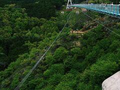 チェックアウトし 三島の方へ。  熱海からバスで30分ほどで着くはずが さすがGW、1時間ほどかかりました。   ▲三島スカイウォーク(箱根西麓,三島大吊り橋) 箱根と静岡の間に位置している、 全長400m 日本一長い歩行者専用吊り橋です。  しっかりとした骨組み 安心していざ渡り始めると 揺れる揺れる。。。 怖すぎました。 この揺れが大事みたい。  富士山,駿河湾が見える。  はずなのですが あいにくの天気により いったいどこに富士山があるのやら、、、