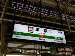 東京駅から在来線特急に乗るのは何十年振りだろう・・・。 大昔の「寝台特急あさかぜ」以来かな。