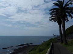 まずは堀切峠で下車。鬼の洗濯岩とヤシの木。日南海岸を象徴する光景が広がります。