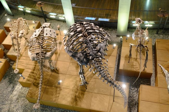 永平寺・恐竜博物館・白山平泉寺神社に行ってきました』勝山(福井県)の ...