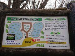 泉ヶ岳水芭蕉群生地に寄り道。