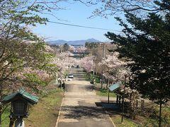 今回は中山峠ルートではなく、小樽周りのルートを選択しました。 最初に立ち寄ったのは、岩内神社。 長い参道に桜が満開です!