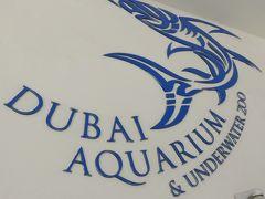 ドバイモールに水族館があるいうので まずは水族館に来ました。
