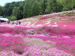 倶知安駅近くの三島さんの庭。個人の庭だそう。
